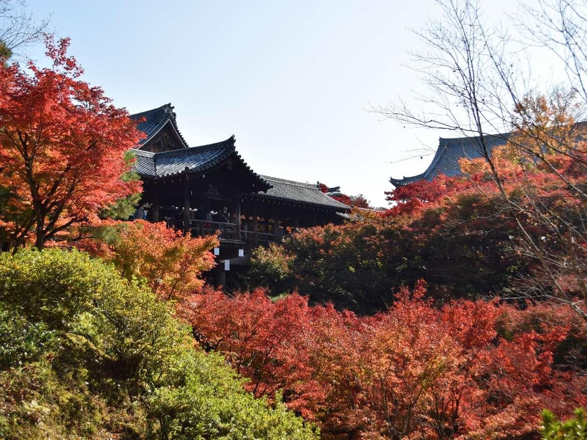 東福寺は京都屈指の紅葉の名所。京阪電車ご利用が便利です。