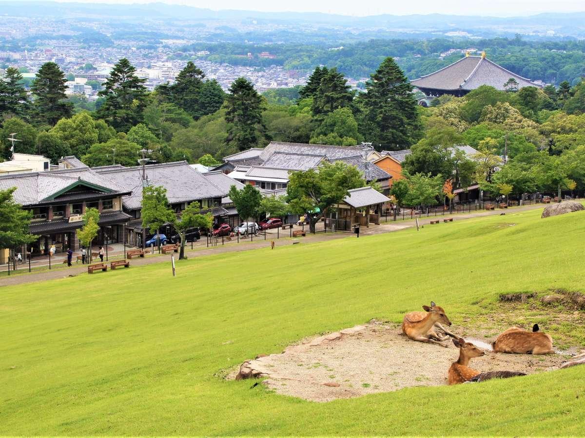 若草山からの景観、右には東大寺の金堂の屋根が見えます。