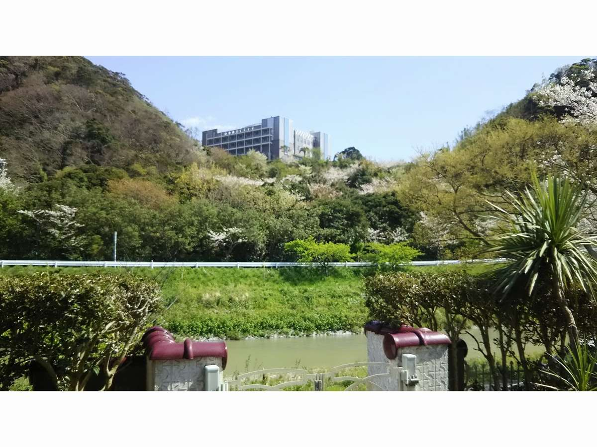 鋸南荘から見える景色
