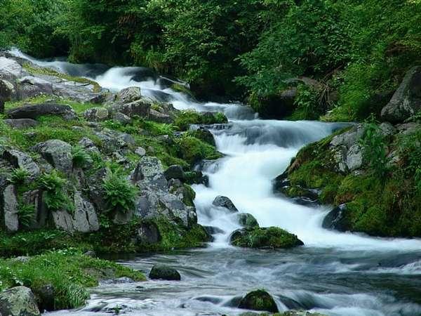 当館は、滝の湯川に沿って建っています。