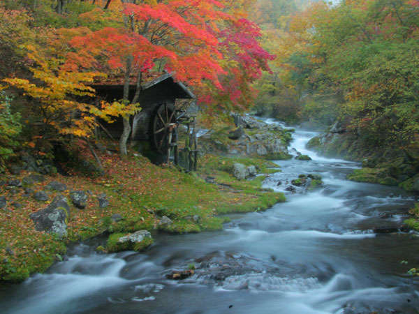 渡り廊下から楽しめる、渓流越しの水車小屋