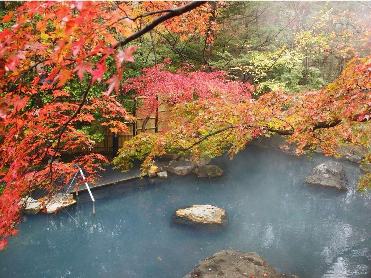 秋には紅く色づいた楓の下で、紅葉風呂をお楽しみください。