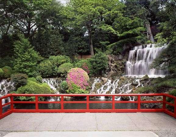 庭園内を流れる滝