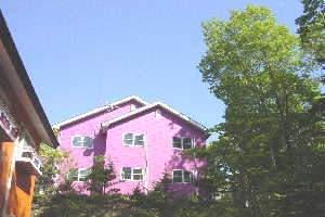 ピンクは本館、オレンジは新館。どちらも森に囲まれております♪