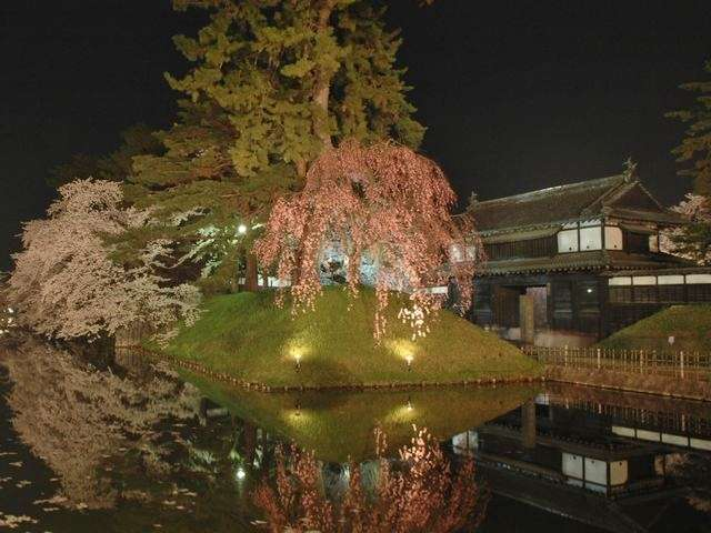◆弘前城/追手門と桜※イメージ