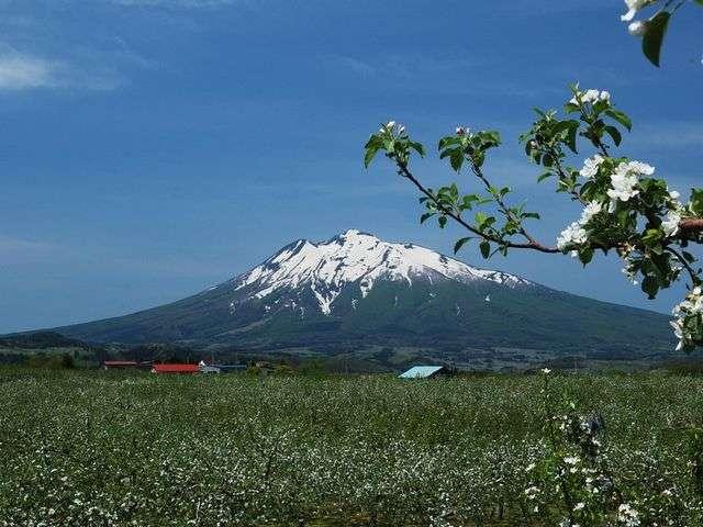 ◆晴れた日の岩木山※イメージ