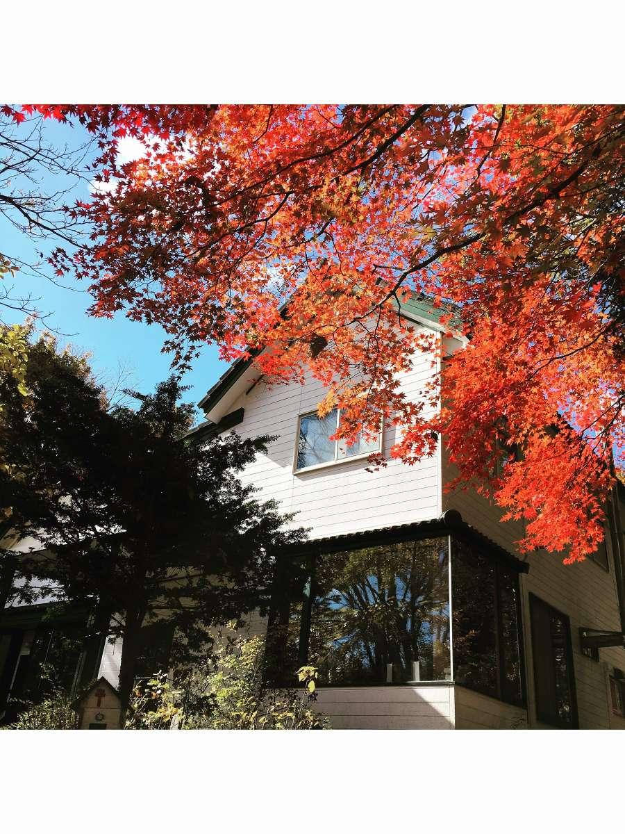 ゲストハウス もみの木