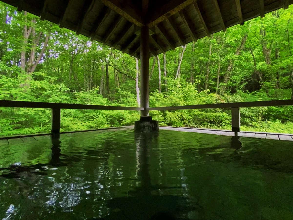 自然の近さを全身で感じることができるお風呂です。
