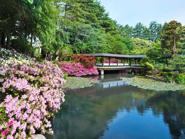 〈春の庭園〉庭園の中心にある池の周りには全てつつじが植えられ、色鮮やかなつつじが皆様をお迎えします