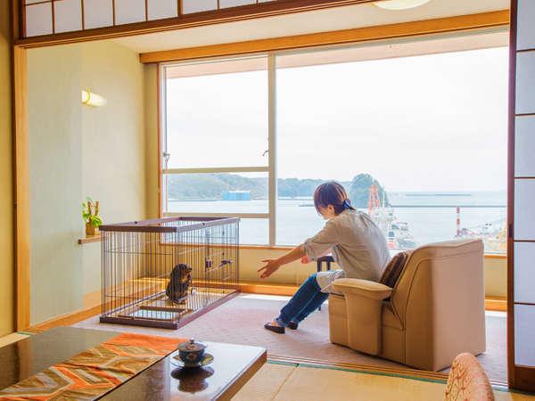 ■【一般客室】ペット/西館 和室■お部屋では、ワンちゃんうさちゃんは、ケージの中でお過ごしください