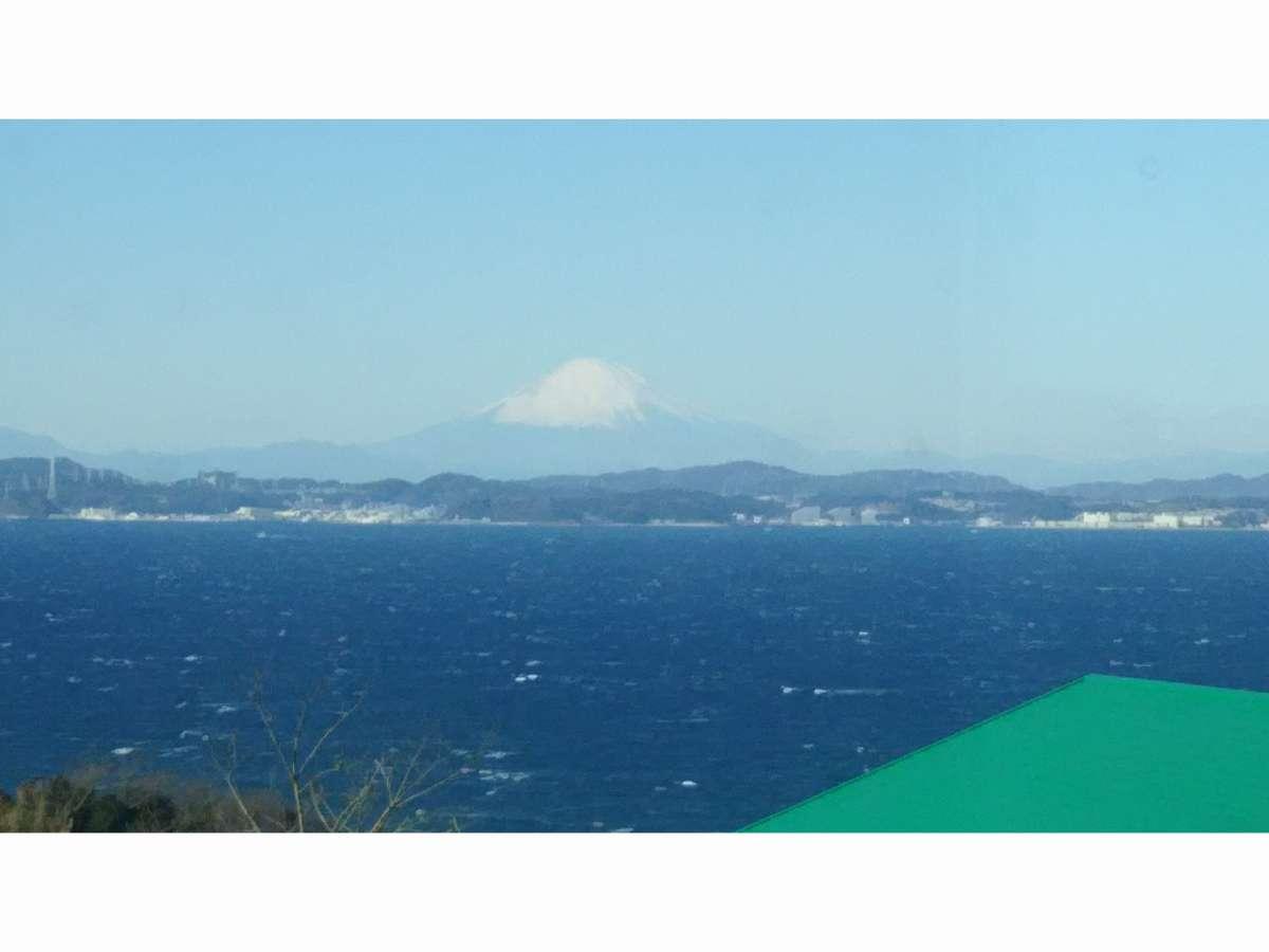 マリーヒルから見える東京湾と富士山