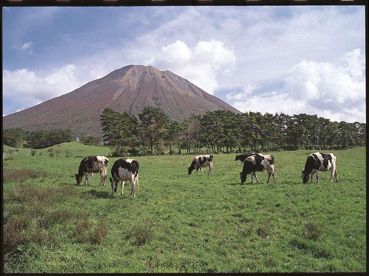 大山まきばみるくの里:大山の裾野に広がる大山放牧場内にあるレジャー施設。