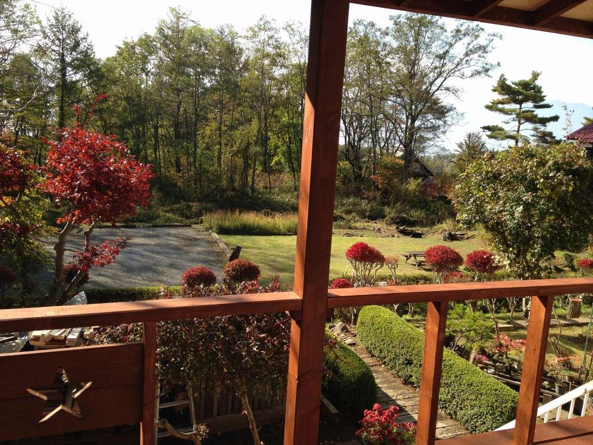 屋根付きデッキからの庭の景色