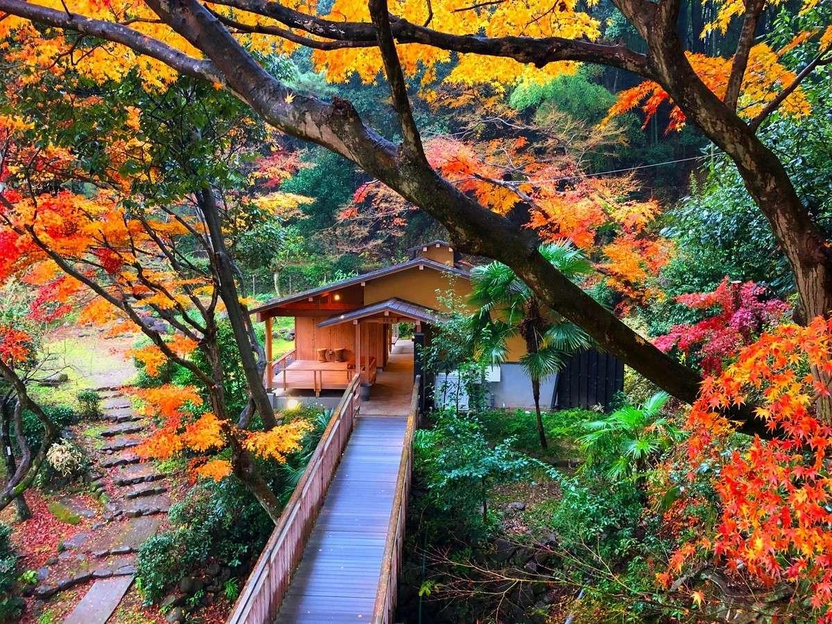 ■貸切風呂『常民庵』■色付いた葉や苔の緑が雨にぬれてより美しく色鮮やかに庭園を彩っています。