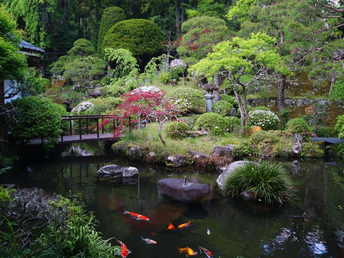 かの有名な夢窓国師の日本庭園。囲まれた緑に風を感じながら、小鳥のさえずりと共に非日常へと導きます。