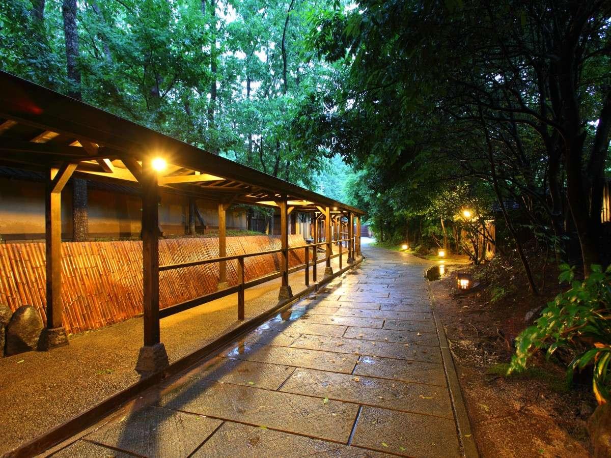 【回廊】森を走る風の音、鳥のさえずり、木々のささやき…。自然界の音が森の時間を贅沢な物にしてくれます