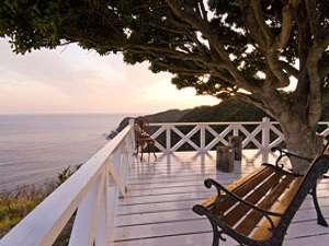 夕日を望む木陰のベンチ