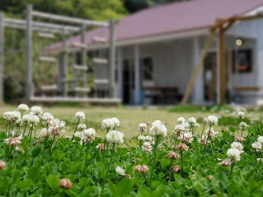 島宿HOPEの中庭