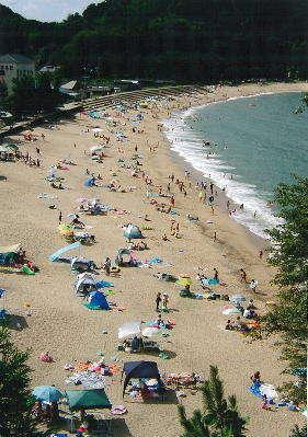 当館がある香美町には、6つの海水浴場がございます!(^^)!