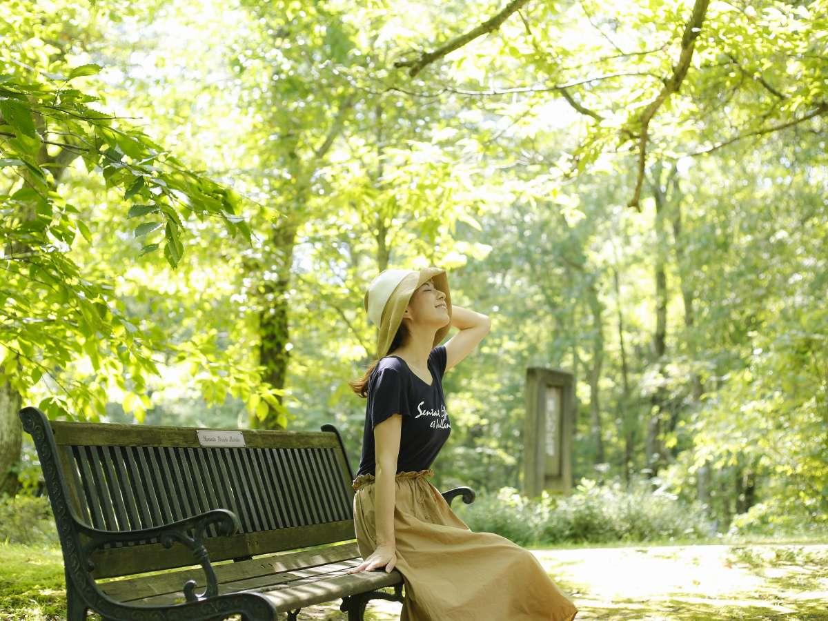 日本有数の植生を誇る癒しの森「但馬高原植物園」へはお車で約10分