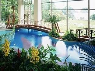 【夏季屋内プール】
