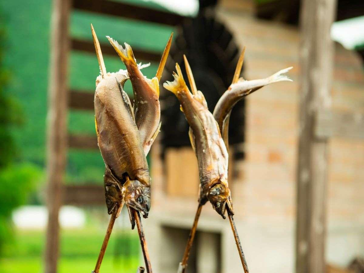 夏御膳/川で獲れたての天然鮎を丁寧に調理いたします!