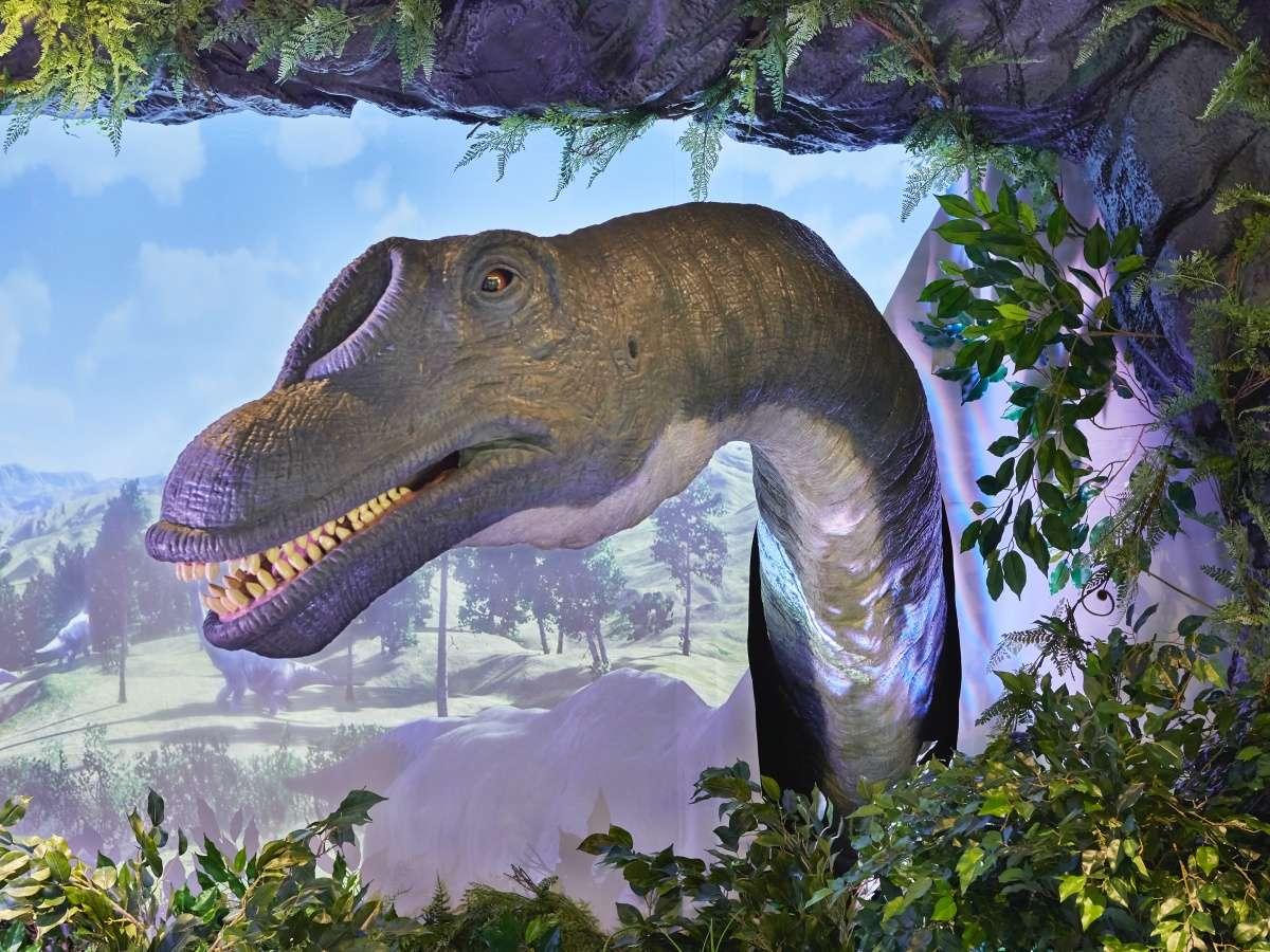 【フロントでは恐竜がお出迎え♪】羽田空港まで最短10分!東京・舞浜・横浜方面へもアクセス抜群