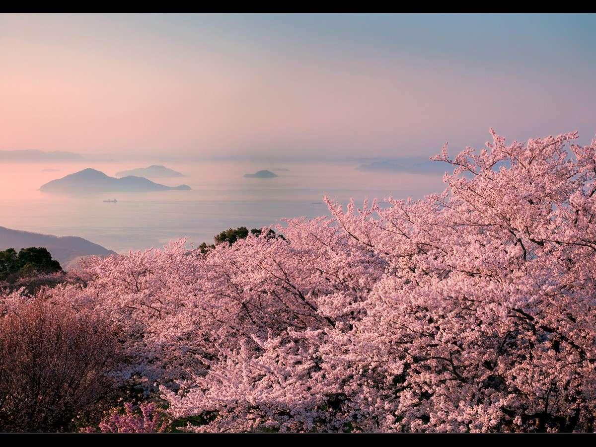 紫雲出山(お車で約40分)