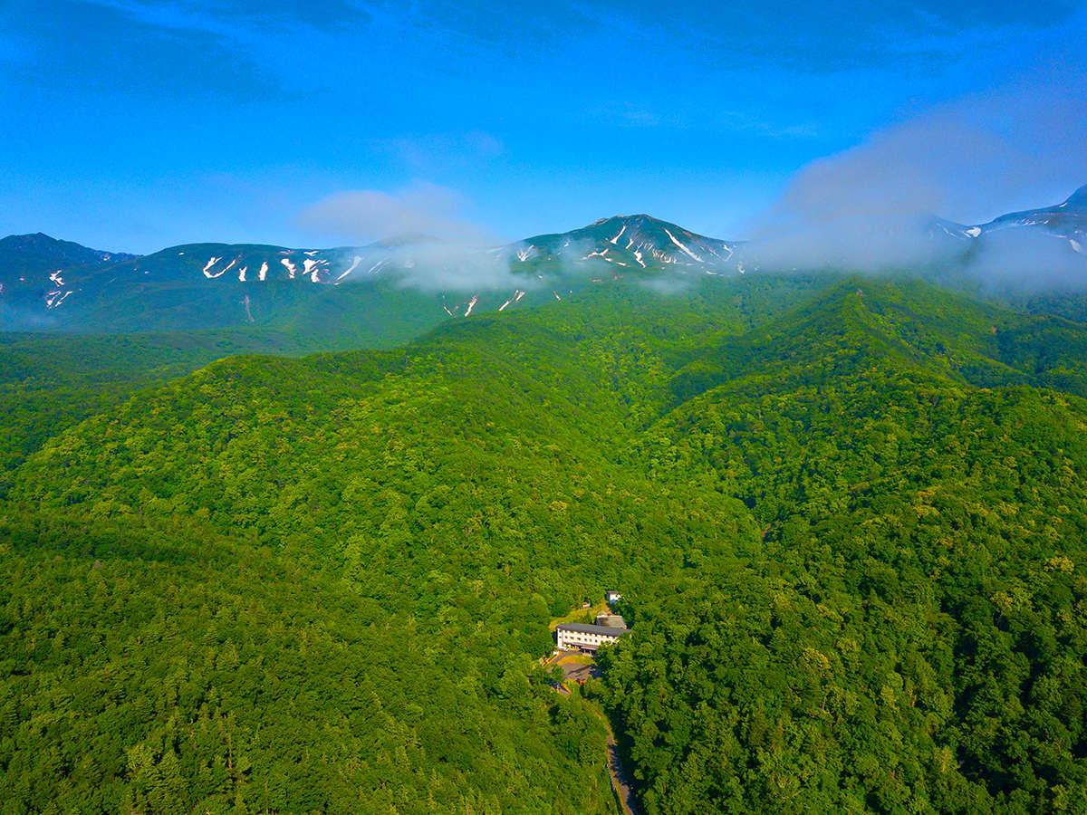 まさに「地のはての秘境」。原生林に囲まれた大自然の中に佇む当館。