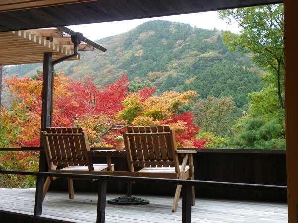 スイートルームのテラスからは、箱根小涌谷渓谷の紅葉を目の前に独占していただけます♪