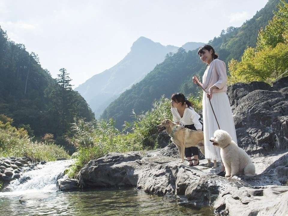 【河川公園】ホテルのすぐ横を流れる唐谷川沿いをお散歩できます♪