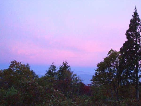 *夕暮れの美しい空の色。ライザの周りは自然がいっぱい!