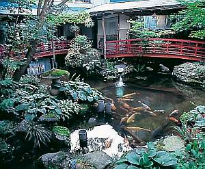 弥彦館 冥加屋:館内に入りまず目に入る純和風の中庭は必見