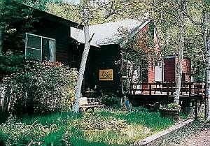 ロッジ山旅:周りを自然の木々に囲まれた宿の入り口