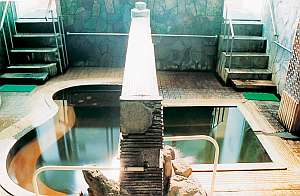 天恵の名湯 いさぜん旅館:オリジナル源泉のいさぜんの湯が人気
