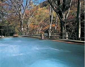 むささびの訪れる宿 つるや旅館:渓谷沿いに有る野天風呂。ムササビも時おり姿をみせる
