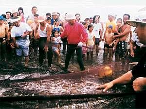蓮沼シーサイドイン小川荘:5~8月の日曜日は「地引網」が体験できる
