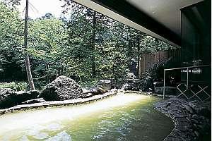 秘湯の宿 元泉館:四季折々、自然美を堪能できる高尾の湯の渓流露天風呂です。
