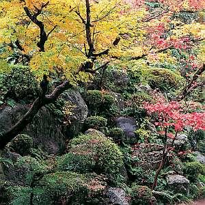 湯之助の宿 長楽園:1万坪の日本庭園。紅葉の時期はまた格別・・・