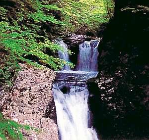小坂の炭酸泉の宿 仙游館:がんだて公園から徒歩約10分のところにある三ツ滝