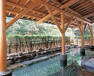 """箱根湯本ホテル:湯本ホテルの温泉は、話題のメタケイ酸を多く含んだ""""美人の湯""""【女性大浴場露天風呂】"""