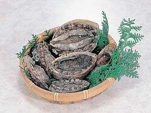 魚の栖 網元 丸仙