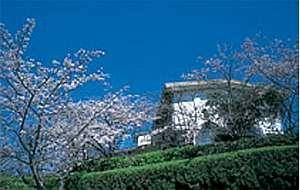 権現山荘:全体風景