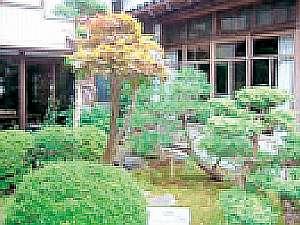 民宿割烹かね八:中庭の木々に心安らぐ