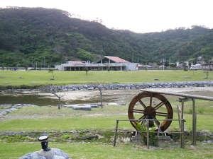 奥ヤンバルの里:*【周辺】宿泊棟の前を静かに流れる清流奥川では、水遊びが出来たり、満潮時には海の魚もやってきます。