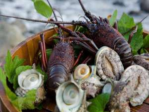 季一遊:伊勢海老や鮑、サザエ等新鮮な海の幸を満喫♪