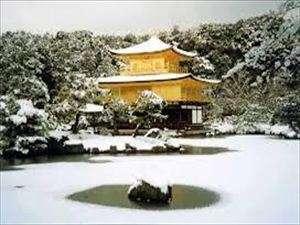 冬の金閣寺は格別!