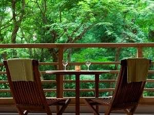 箱根小涌谷温泉 水の音:凛とした緑を望むロビーテラス