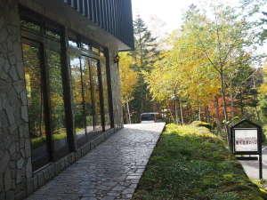 原生林の秘湯 濁河温泉ロッジの写真