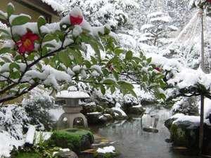 認定5つ星 緑と人の優しさに包まれる癒しの湯宿 たちばなや:冬の庭園